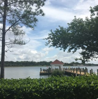 Wordless Wednesday: Theme Park Views